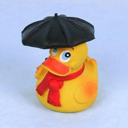 Rainy Days Duck